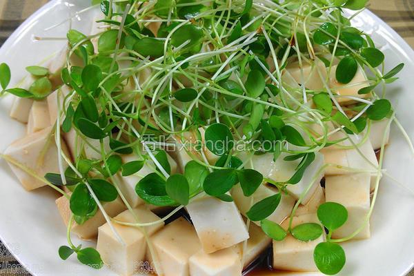 香椿苗拌豆腐