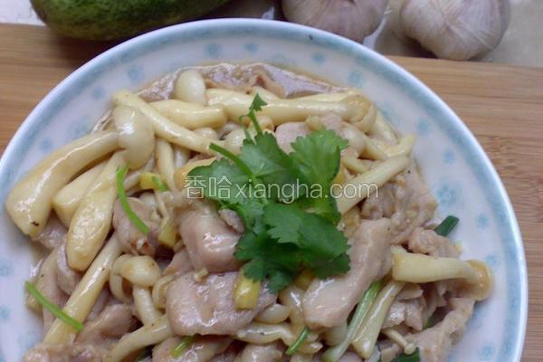 白玉菇炒肉片