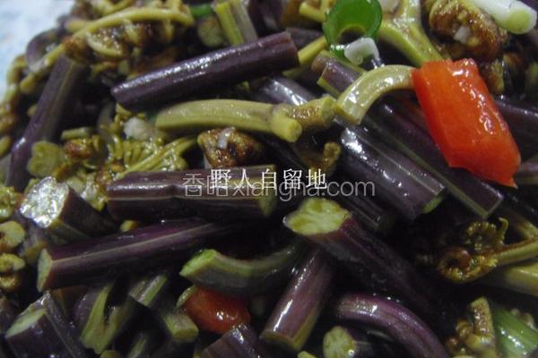 凉拌野蕨菜