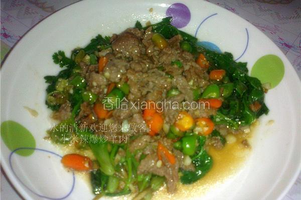 小米辣椒爆炒羊肉