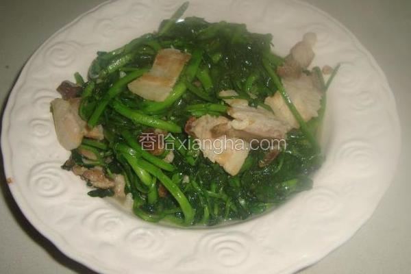 猪肉炒西洋菜