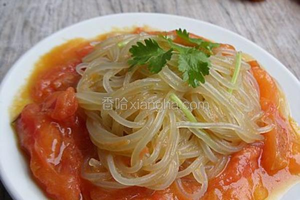 西红柿炒粉丝
