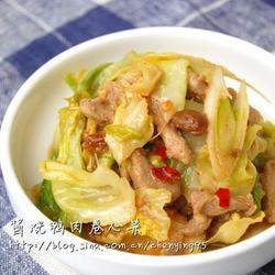 酱烧鸭肉卷心菜的做法[图]