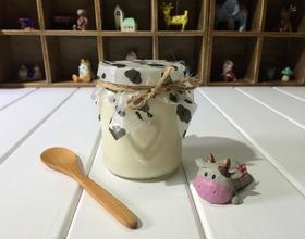 自制手工酸奶