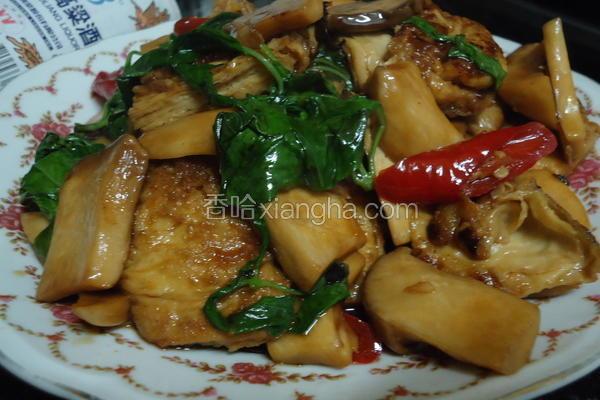 塔香杏包菇