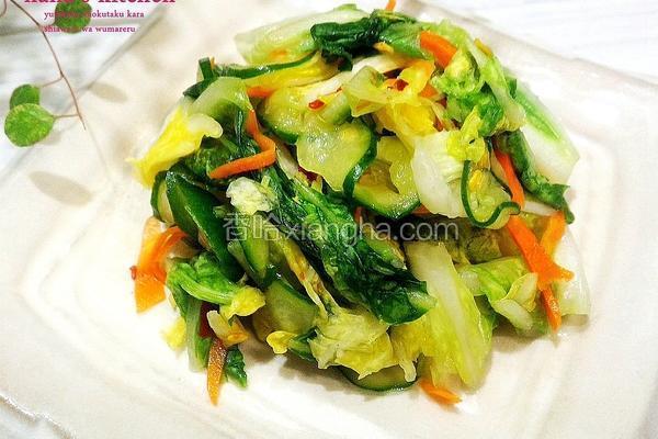 日式白菜浅渍