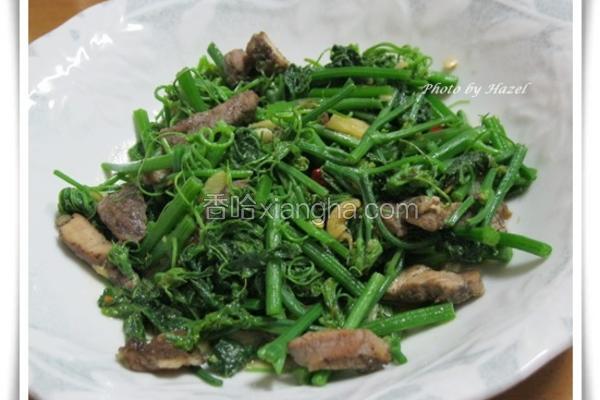 辣炒咸猪肉龙鬚菜