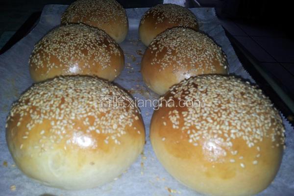 汉堡堡面包