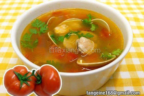 洋葱番茄蛤蜊汤