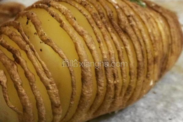 手风琴马铃薯