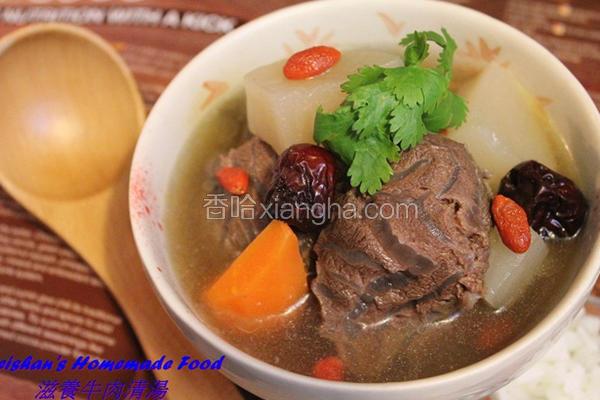 滋养牛肉清汤