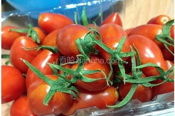 田力玉女小番茄