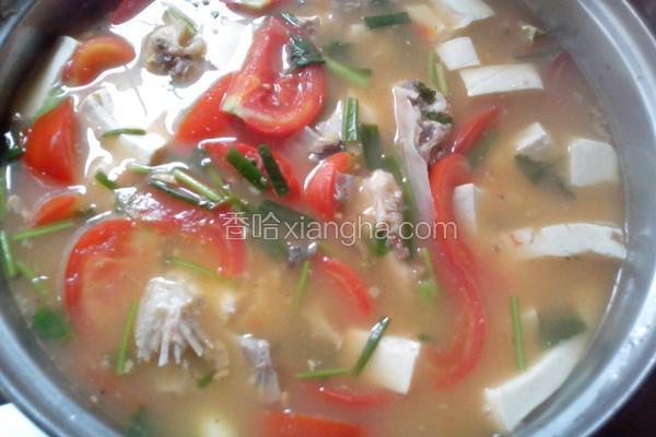番茄白豆腐鱼头汤
