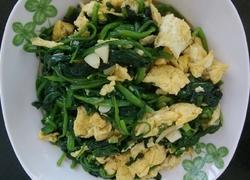 胡油菠菜炒蛋