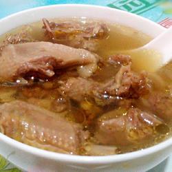老鸽炖参汤