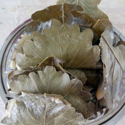 玻璃叶饼(柞树叶饼)