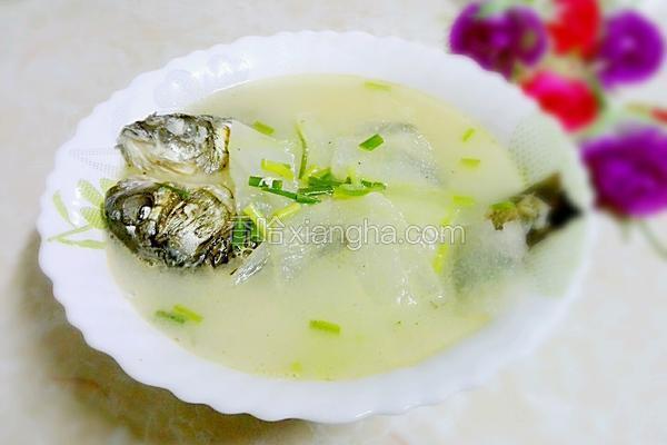冬瓜鯽魚湯