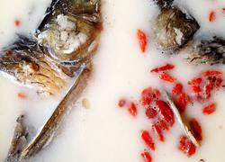 枸杞鱼头汤
