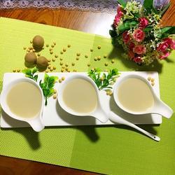 红枣桂圆豆浆的做法[图]