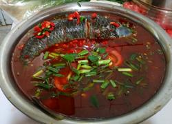 红酸汤野生酸汤魚