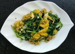 香菜鸡蛋~家常菜