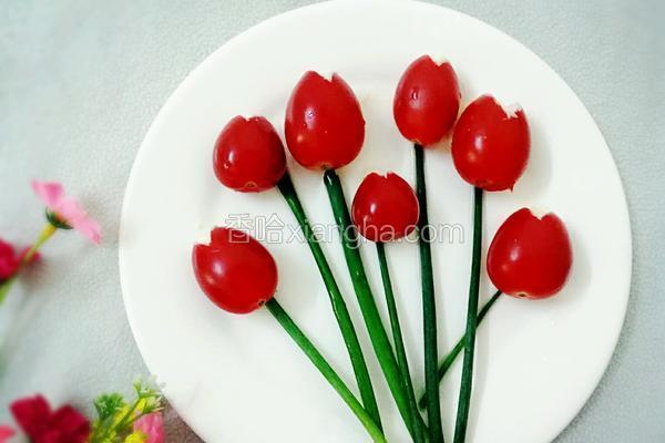 圣女果郁金香