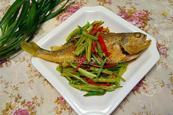 香煎黄瓜鱼