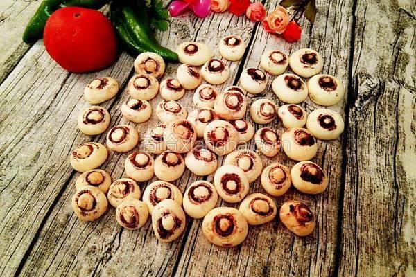 蘑菇小饼干