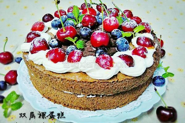 双层裸蛋糕
