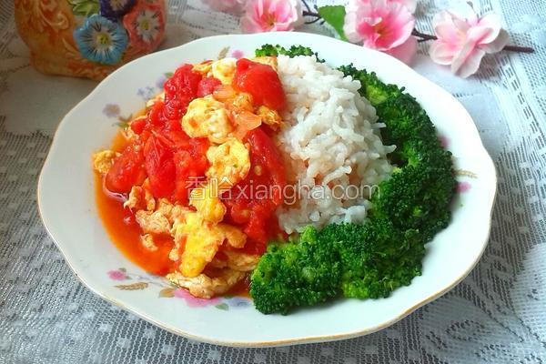 番茄炒蛋盖浇饭