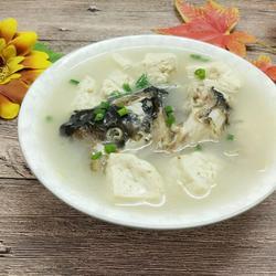 胖头鱼豆腐汤