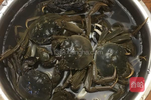 卤菜谱的做法_河蟹v菜谱菜谱的图片