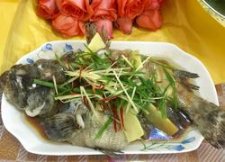 葱油石斑鱼