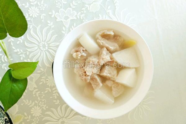 白萝卜猪肺汤