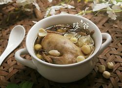 白莲茶树菇乳鸽汤