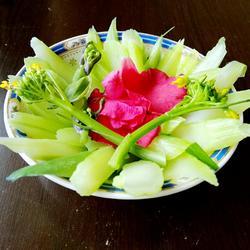 鲜花时蔬紫菜苔
