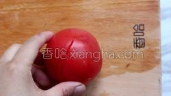 西红柿炖牛腩的做法图解3
