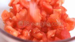 西红柿炖牛腩的做法图解7