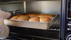 全麦面包的做法图解19