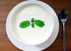 酸奶机酸奶