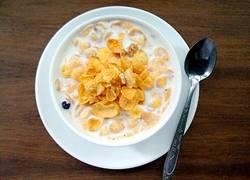 牛奶谷粒玉米片