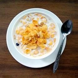 牛奶谷粒玉米