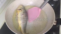 黄鱼炖豆腐的做法图解5