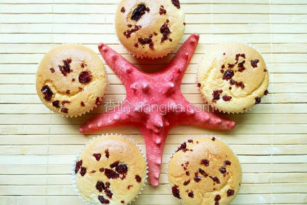 蔓越莓戚风小蛋糕