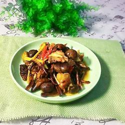 柳树蘑菇烧鸡肉(加板粟版)