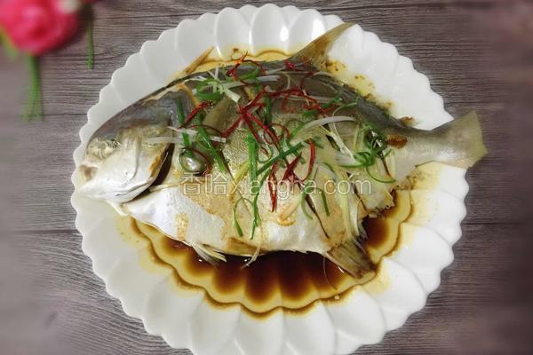 v菜谱金菜谱的鲳鱼_做法_香哈网乳腺增生能吃橄榄油吗图片