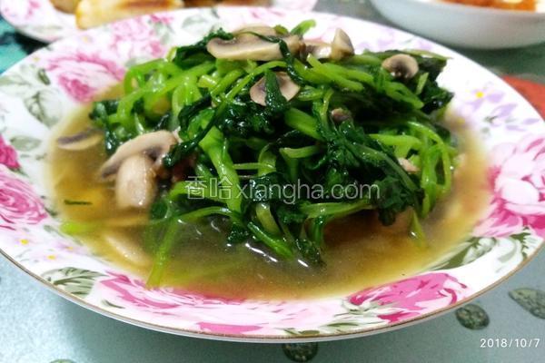 蘑菇清炒鸡毛菜