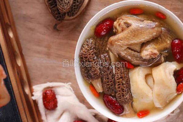 羊肚菌鸽子新西兰花胶汤