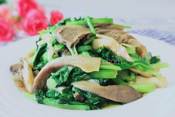 鲜蘑炒油菜