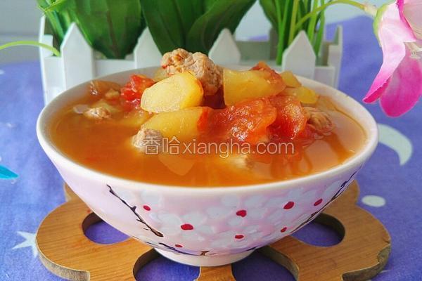 苹果番茄牛肉汤